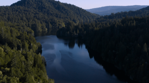 (4K) Aerial Forest Lakes 2 Matte Effect