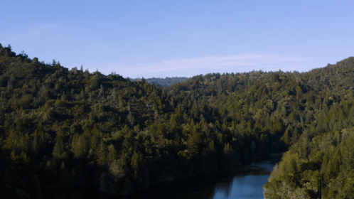 (4K) Aerial Forest Lakes 3 Matte Effect