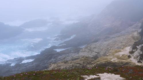 (4K) Aerial Misty Shore 4 Effect