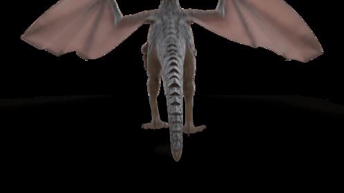 (4K) Mountain Dragon Landing Rear Effect