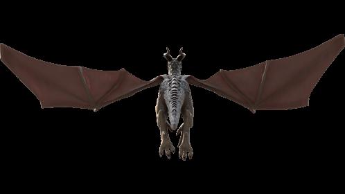 (4K) Mountain Dragon Flying Rear Effect