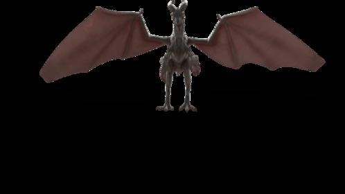 (4K) Mountain Dragon Landing Front Effect