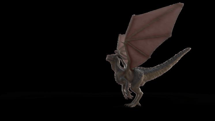 (4K) Mountain Dragon Take Off Side Effect