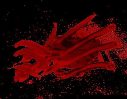 Blood Smear HD 9K