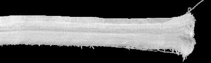 Ripped Fabric HD 12K