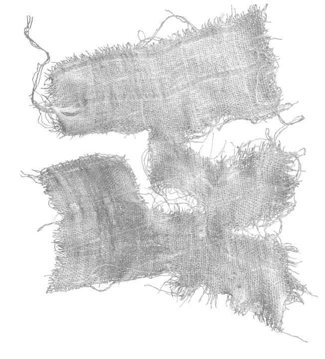 Ripped Fabric 28