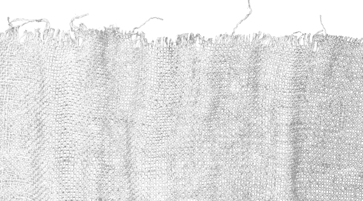 Ripped Fabric 2