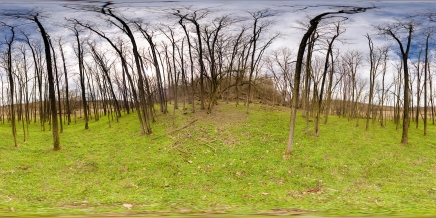 HDRI Nature HDR HD