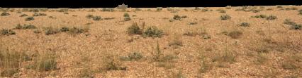 Desert Landscape Extension HD 4K