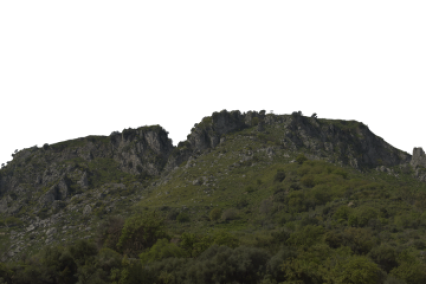 Landscape Green Mountain 2