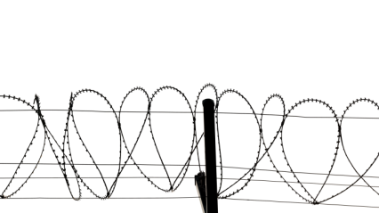 Barbed Wire HD 7K