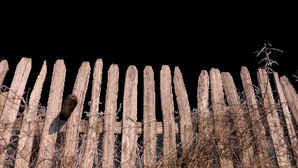 Wooden Fence HD 7K