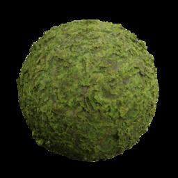 3D Material: Tropical Moss 1