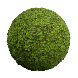 3D Material: Tropical Moss 2