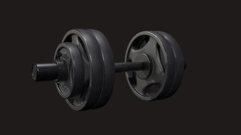 3D Model: Dumbell